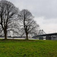 Rheinufer  von der Mündelheimer Seite aus gesehen - Blickrichtung Uerdingen, Крефельд