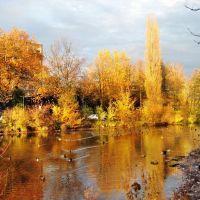 Lippstadt Grüner Winkel im Herbst, Липпштадт