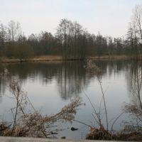 See Stadtpark Wienburg, Münster, Мюнстер