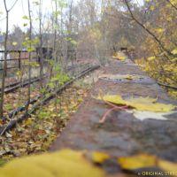 Herbst auf dem Viadukt der Wissertalbahn / km 6,9, Рейн