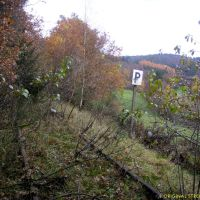 zugewachsene P-Tafel bei km 4,9, Рейн