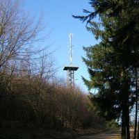 Morsbacher Aussichtsturm, Рейн