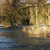 Wisserbach, Рейн
