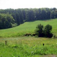 Brücherwiese, Рейн
