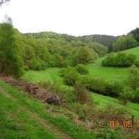 Niederdorf Bachtal, Рейн