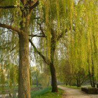 Aawiesen-Park in springtime, Herford, Херфорд