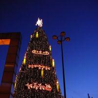 ¤{B} -Dortmund der Weihnachtsbaum 2008, Дортмунд