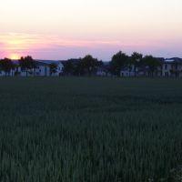 Sonnenuntergang Pflaumallee Sommer 2010, Beckum