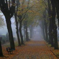 Beckum, Parkfriedhof im November, Beckum