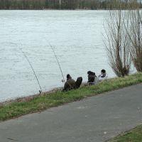 Angler am Urfelder Rheinufer, Нидеркассель