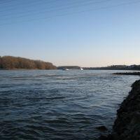 Rhein aufwärts, Нидеркассель