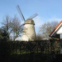 Alte Windmühle, Ауе
