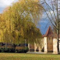 Stadtmauer mit Stadtweiher, Вайсенбург