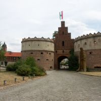 Salzwedeler Tor, Гарделеген