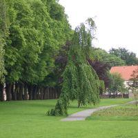 am Wall, Гарделеген