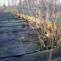 selbst Brücken werden erobert, Гарделеген