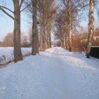 Weg zum Teterower See, Тетеров