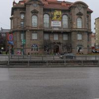 Luonnontieteellinen museo - Helsinki, Хельсинки