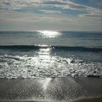 Sole sul mare, Канны