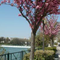 Joinville-le-Pont 2, Сен-Мар-дес-Фоссе