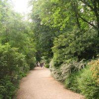 Caminando, Nogent-sur-Marne, Фонтеней-су-Буа