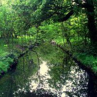 Bois de Vincennes, Фонтеней-су-Буа