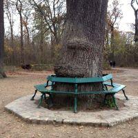 Bois de Vincennes., Фонтеней-су-Буа