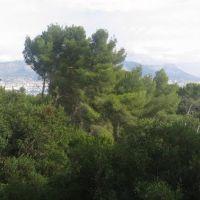 Toulon vu du Fort Napoléon, Ла-Сен-сюр-Мер