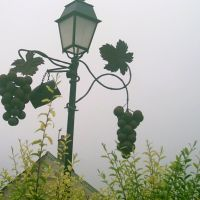 lamppost with grapes hanging, Анже