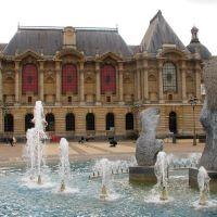Lille - Musée des Beaux-Arts, Лилль