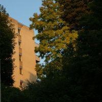 la nature en ville. Les Montquartiers, Исси-ле-Мулино