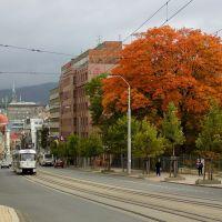 podzimni strom a dvojka, Либерец
