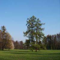 Park of Božena Němcová, Карвина