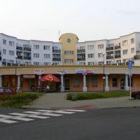 Opava - Druhý domov pro seniory s pečovatelskou službou (Second home for the seniors with nursing service), Опава