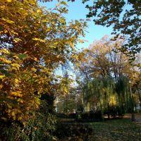 Podzim v opavských parcích (Autumn in parks of Opava), 3, Опава