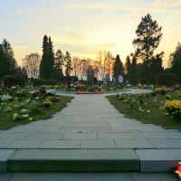 Opavský hřbitov (Cemetery in Opava) - mnoho květin na rozsypové loučce (many flowers on scatter meadow), Опава