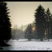 park v ove by JP, Острава