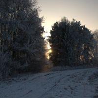 Haukovice zima, Оломоук