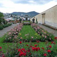 Rosengarten mit Blick zur Gloriette, Дечин