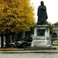 Pomnik.Fribourg.Szwajcaria, Фрейбург