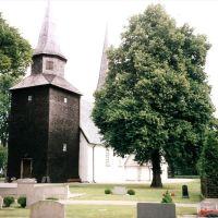 Levene kyrka 1999, Борас