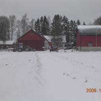 Fahlgrens i vinterskrud, Борас