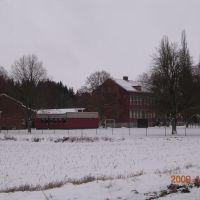 Levene skola, Борас