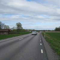 Väg 44 nordöst om Särestad 2010, Борас