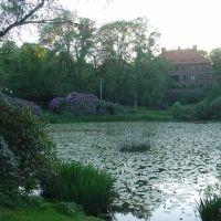 Pond, Гетеборг