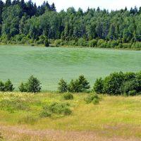 Summer field, Еребру