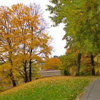 Autumn - Västra Skogen, Сольна