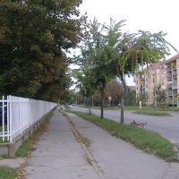 Pančevačka ulica :-), Зренянин