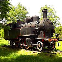 парна локомотива у железничком парку, Зренянин