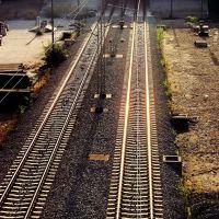 Fast tracks, Белград